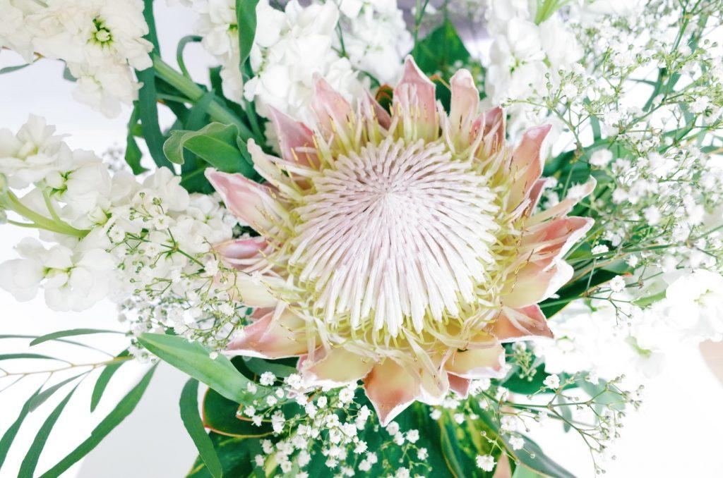 king protea arrangement